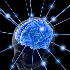 alimenti-per-il-cervello